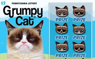 GRUMPY CAT® - How to play (game rules) - Example of winning - Video